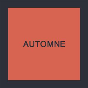 AUTOMNE300